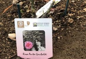 """""""Due mondi e una rosa per Anita"""" premiato dalla Regione"""
